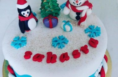 Fondant-Decoration-Cakes-Workshop-in-Hyderabad